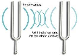 diapason et vibration sympatique